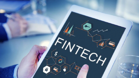 Digital Payments: Government Fintech Solutions in Action