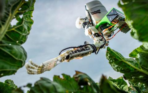 Robotics and Big Data Will Transform Agriculture