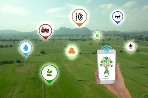 Agriculture's Digital Transformation Enabled by IoT Apps