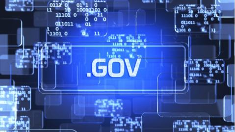U.S. Federal Government IT Security and Privacy