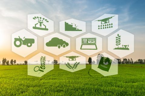 Digital Transformation of Food Supply and Demand